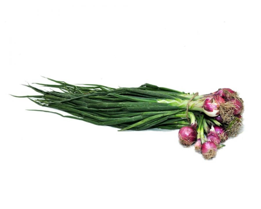 buy_online_fruit & vegetable Spring-Onion-sagga pyaj_in_muzaffarpur